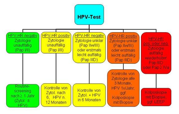 hpv high risk gruppe